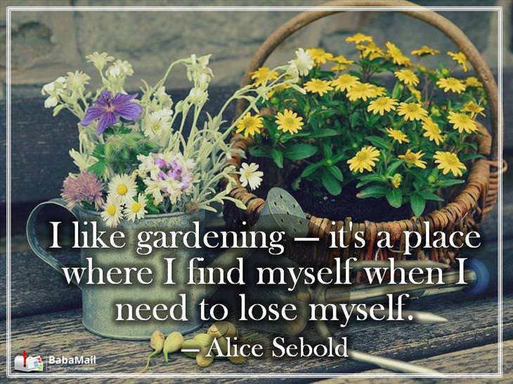Garden Quotes | 12 Heart Warming Quotes About Gardening Nature Babamail