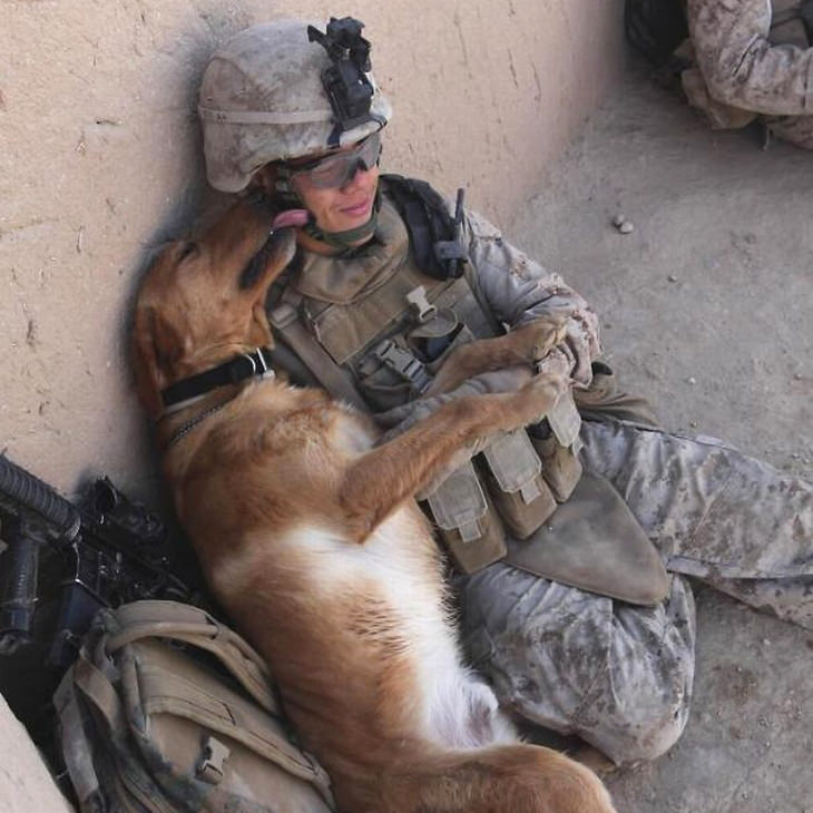 military-dogs-owners