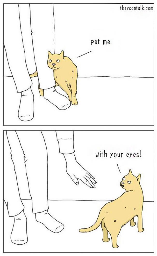 comics, animals, funny