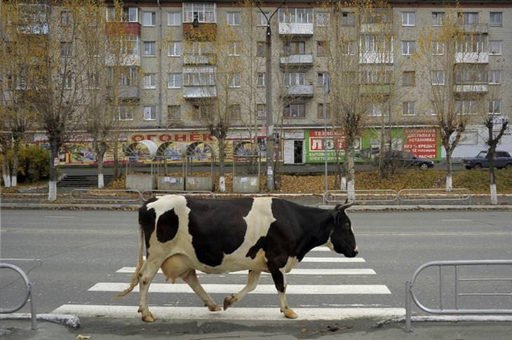 russia photos