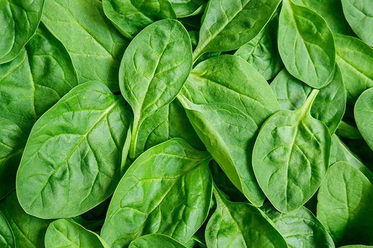 spinach-heart-tissue