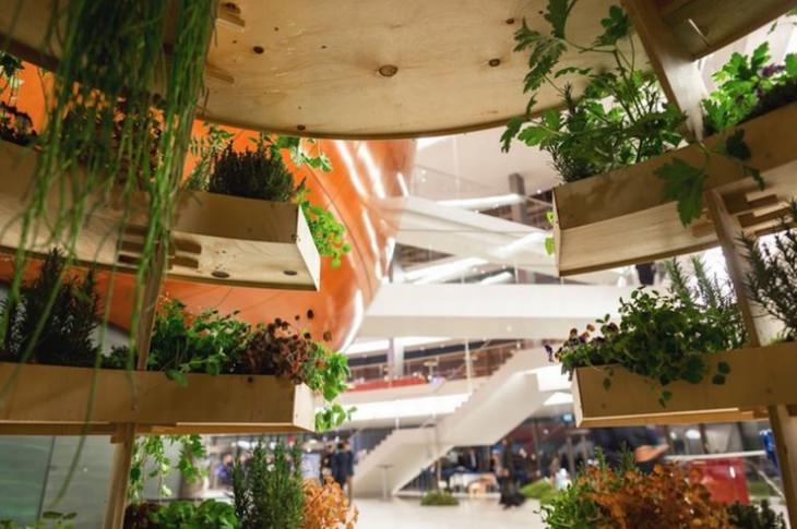 sustainable-vertical-garden