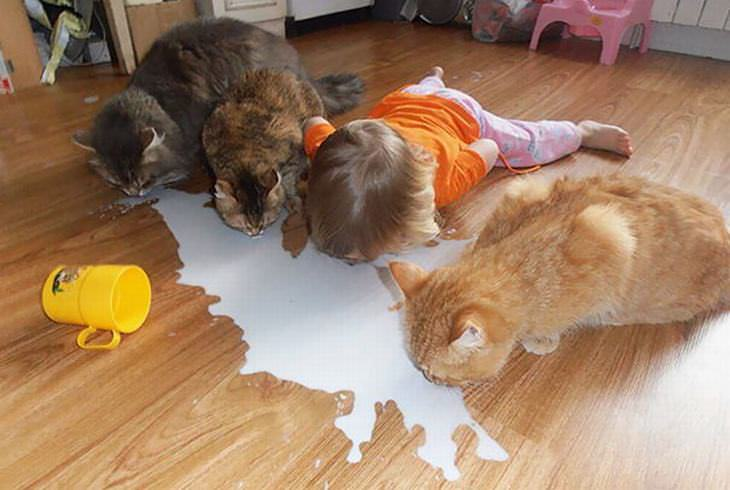kids alone with pets