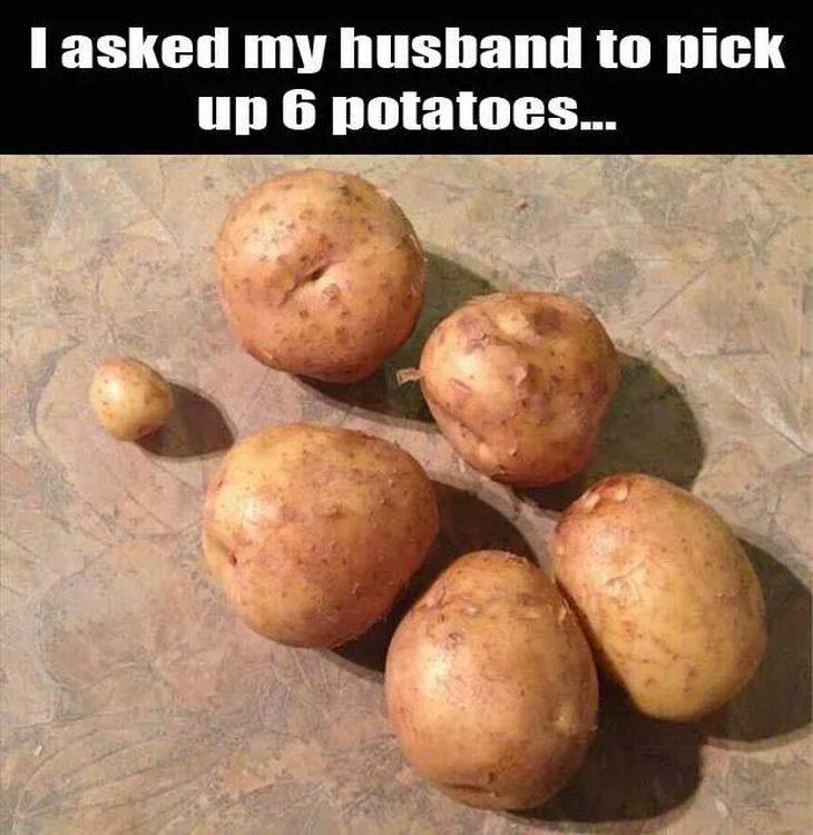 husband-memes