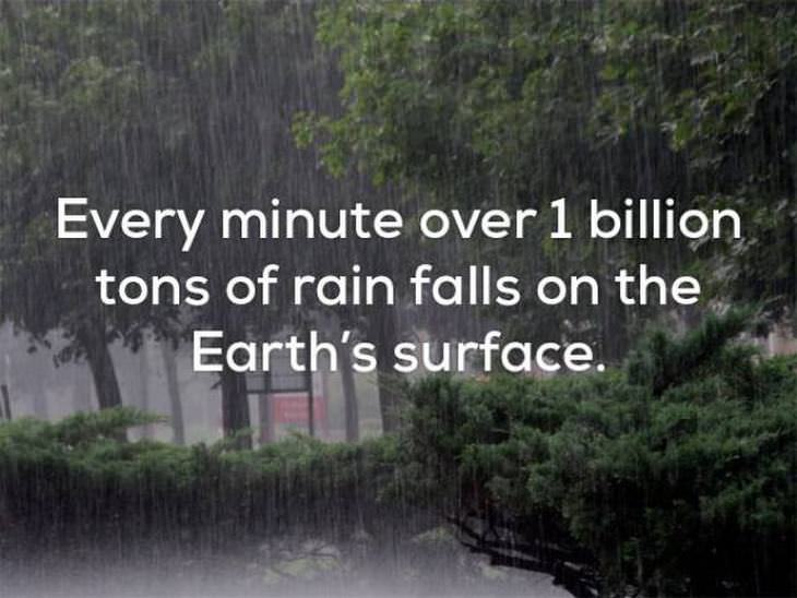 weather facts