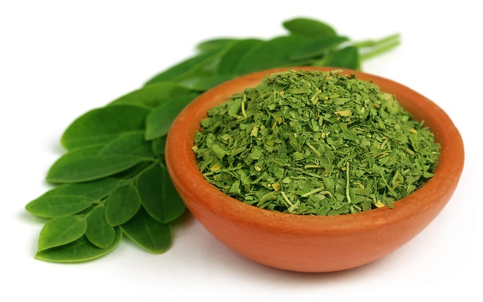 Moringa Can This Herb Stop Cancer Health Babamail