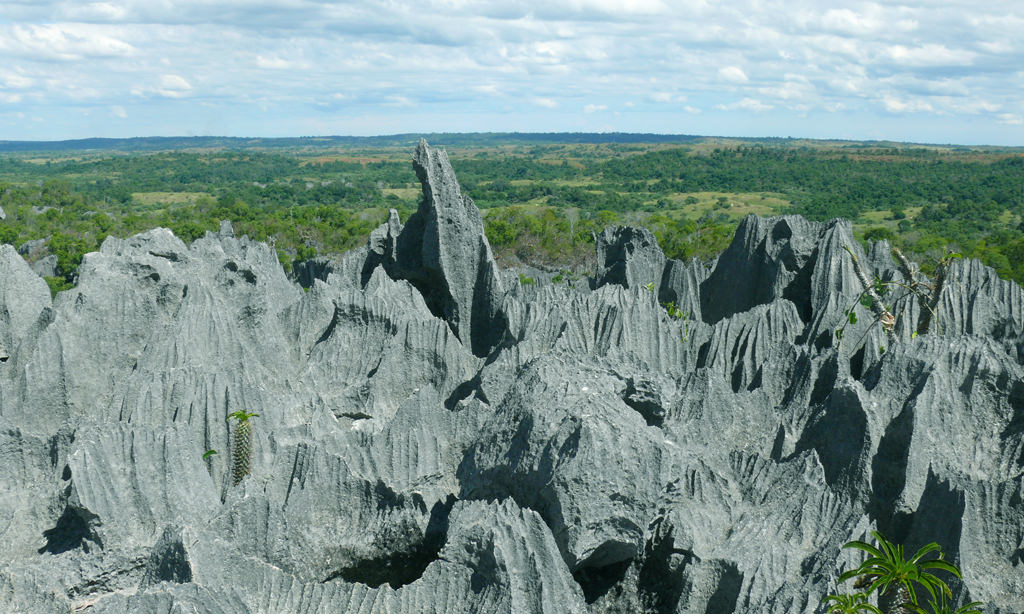 The 10 Most Amazing Attractions In Madagascar | Travel ...