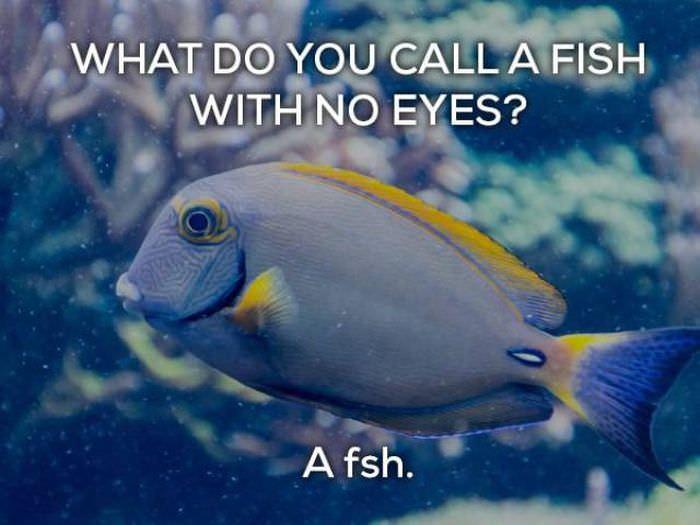 bad biology jokes