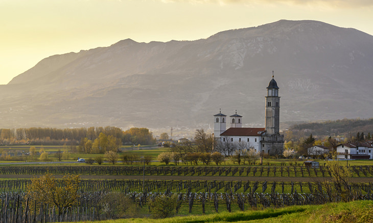 Image result for Slovenia's Vipava Valley attracts in-the-know wine lovers who want to get off the beaten track