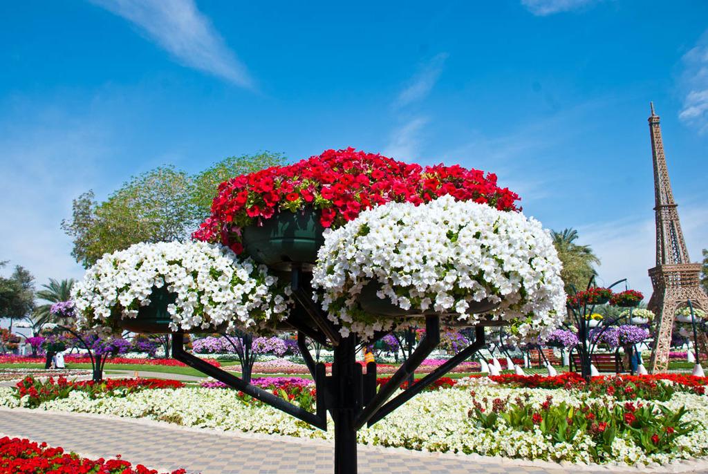 Gaze at a Truly Beautiful Garden | Travel - BabaMail