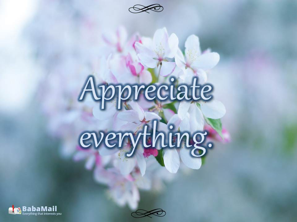 60 Quotes about Appreciation Spirituality BabaMail Magnificent Quotes About Appreciating Life