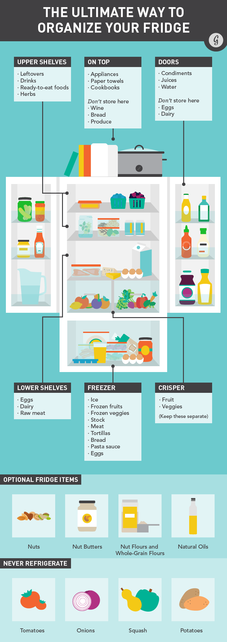 Fridge Infographic