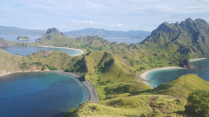Komodo Island, Snorkeling, Scenic, Indonesia, Coral, Colorful Fish, endangered species