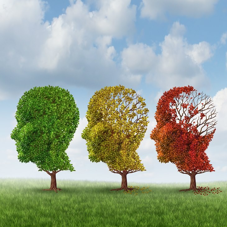 new study reveals air pollution can increase risk of dementia and alzheimer's disease, three trees shaped as human heads with green, yellow and red leaves respectively, each with fewer leaves than the last
