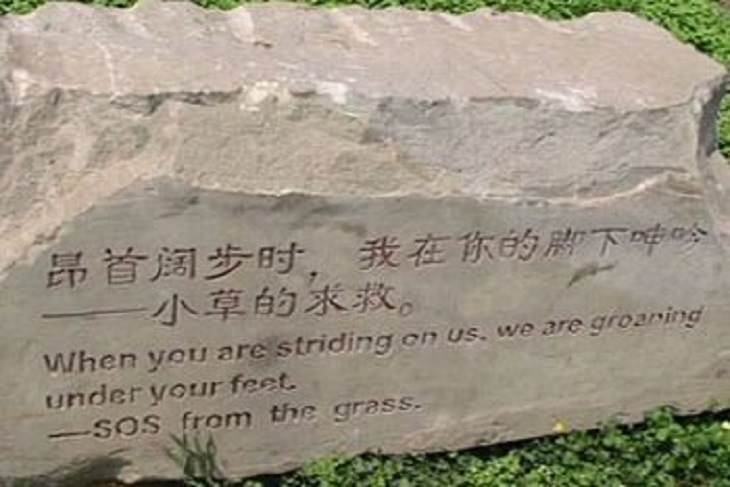 Funny foreign language signs, translations fails, rock on grass with words engraved saying, When you are striding on us, we are groaning under your feet - SOS from the grass