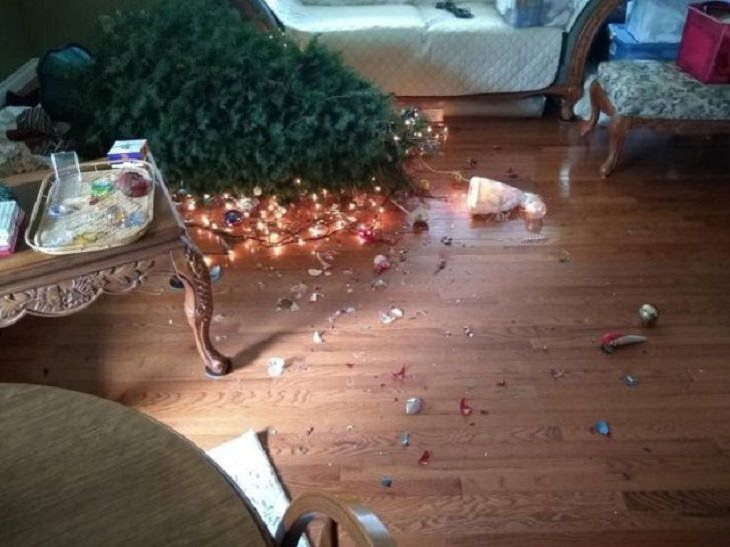 Hilariously bad days for people caught on camera, fallen christmas tree
