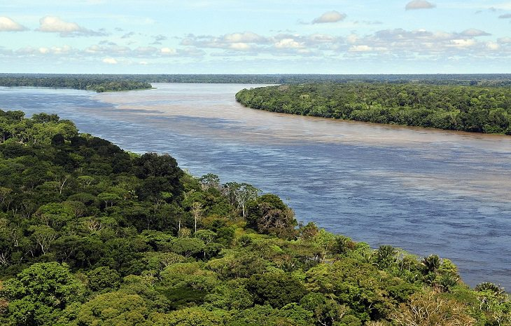 Photographs of the view and flora and fauna in Amazon Rainforest, The Amazon Rainforest near Manaus, as seen from above