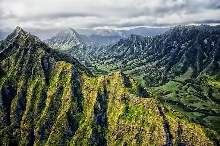 Hawaiian Kona Coffee, Coffee, Beans, Caffeine, Expensive, Best, Rarest, Exotic