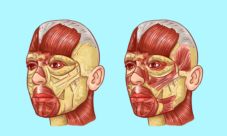 korugi facial muscles