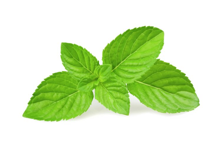 natural remedies for bad breath: mint