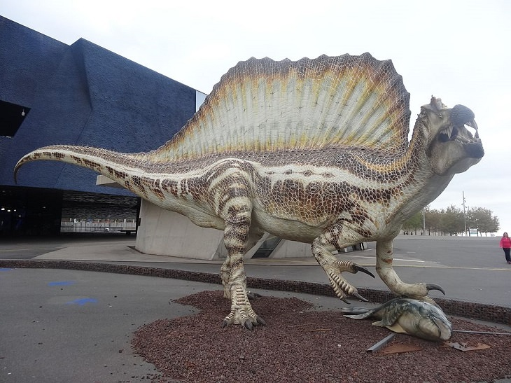 nature, science, history, dinosaur, biggest, largest, Prehistoric, extinct, reptiles, record-holding, heaviest