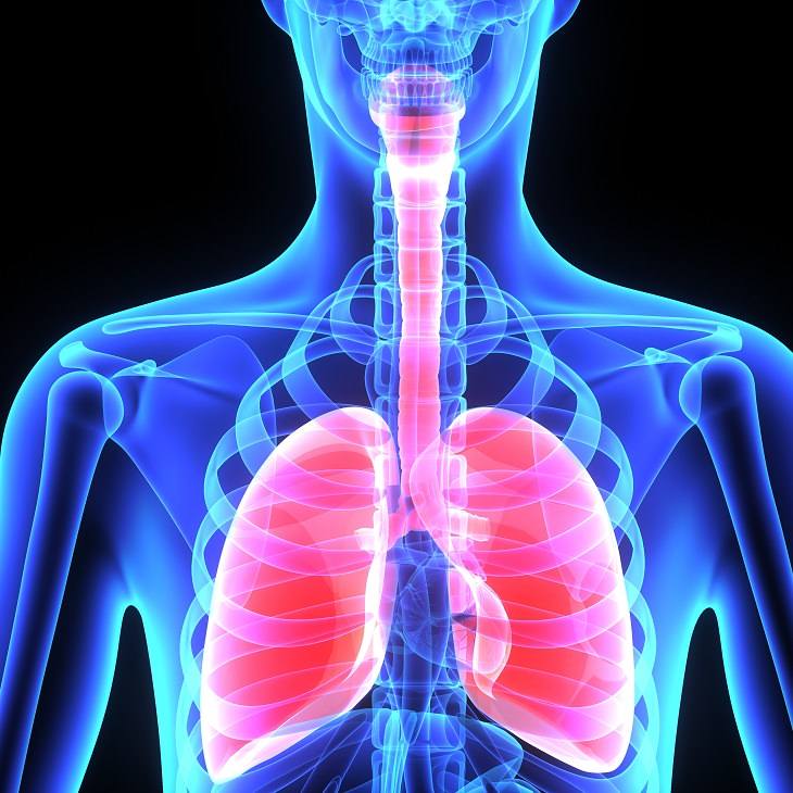 Lungs, health, spirituality, exercise, attack, symptoms, Asthma, breathing, yoga poses, improve, quality of life, pranayama
