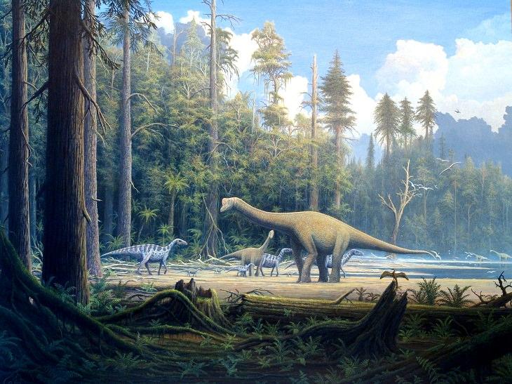 Cutest Dinosaurs Europasaurus