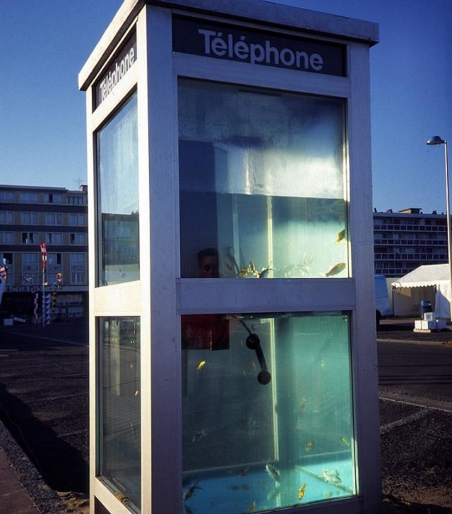 Creative and Unusual Aquariums with an interesting design, Telephone Booth Aquarium
