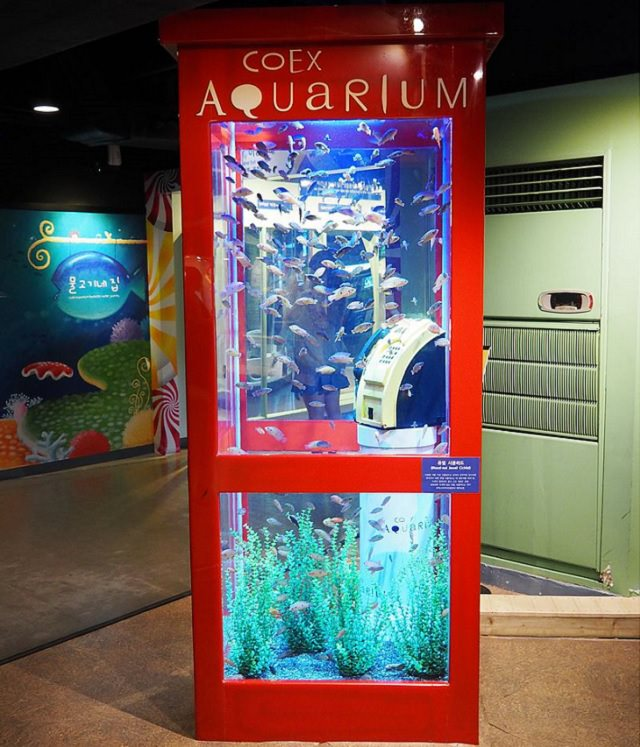 Creative and Unusual Aquariums with an interesting design, Coex telephone booth Aquarium