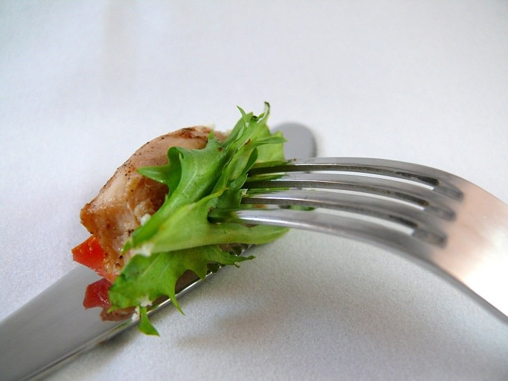 Names of everyday items you didn't know, Fork prongs piercing a piece of lettuce, tines