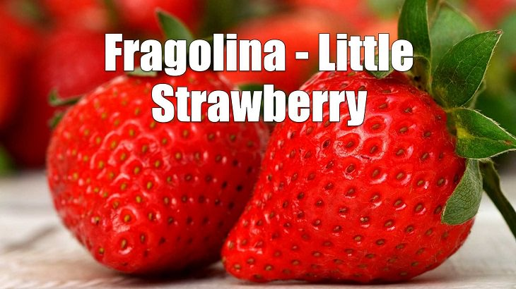 Weird yet cute terms of endearment and pet names for loved ones in different foreign languages, Italian, Fragolina - Little Strawberry