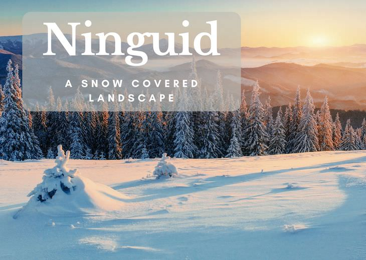 12 Long Forgotten Funny Christmas Words, ninguid