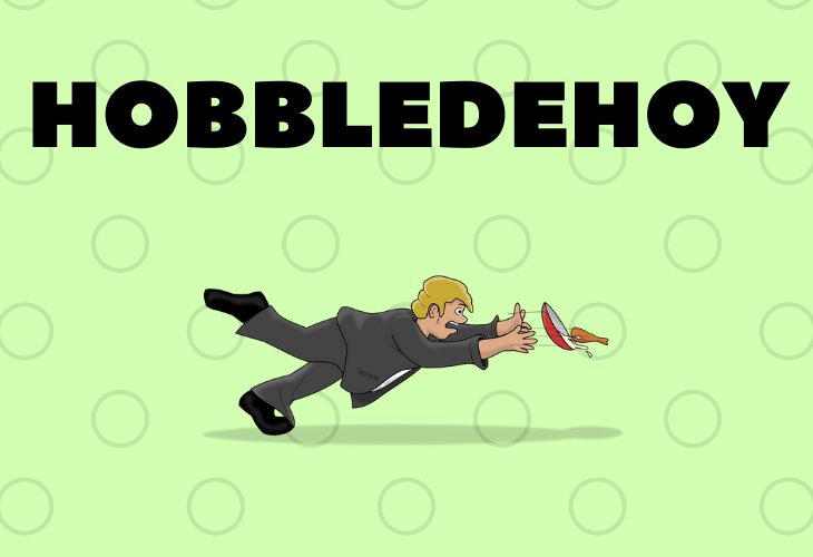 Fancy words you can use every day to add to your vocabulary, hobbledehoy