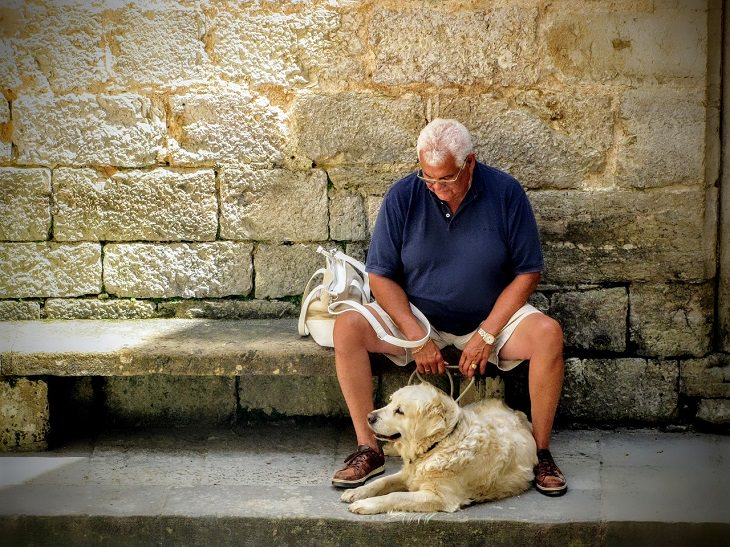 Effects, mental and physical health benefits of pet therapy, animal-assisted therapy, pet ownership