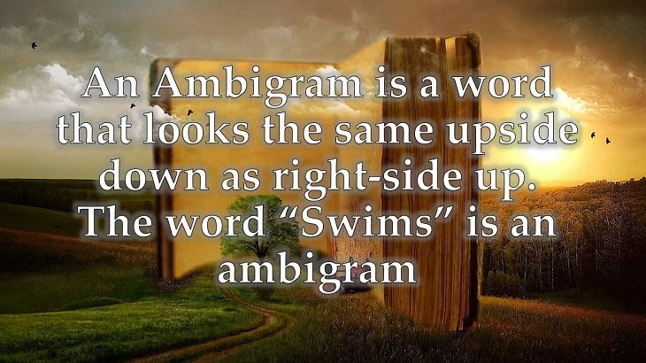 """Interesting and fascinating facts about the history and development of the English Language, An Ambigram is a word that looks the same upside down as right-side up. The word """"Swims"""" is an ambigram"""