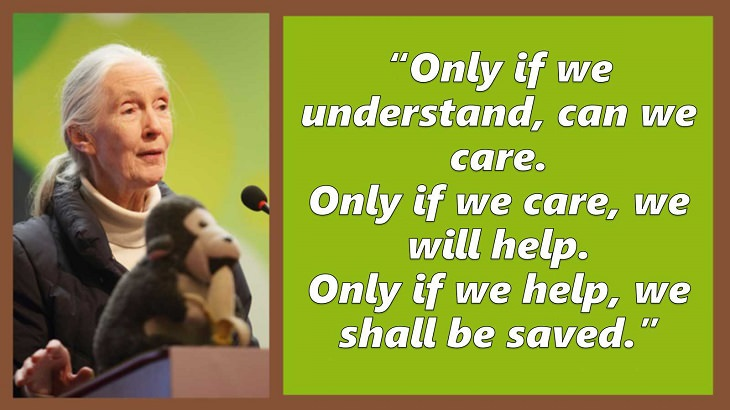 Inspiring and uplifting quotes and words of wisdom from expert on primates, Jane Goodall, Only if we understand, can we care. Only if we care, we will help. Only if we help, we shall be saved.