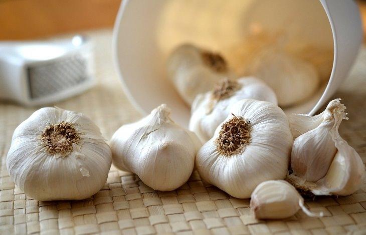 Eating garlic , immunity