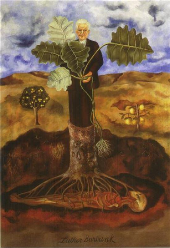 Many beautiful works of art, portraits and paintings on the culture of Mexico, made by Mexican Artist Frida Kahlo, Portrait of Luther Burbank
