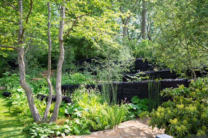 Winning Entries in the 2019 RHS Chelsea Flower Show and Garden Show in London, Show Gardens, Best in Show - The M&G Garden by Andy Sturgeon