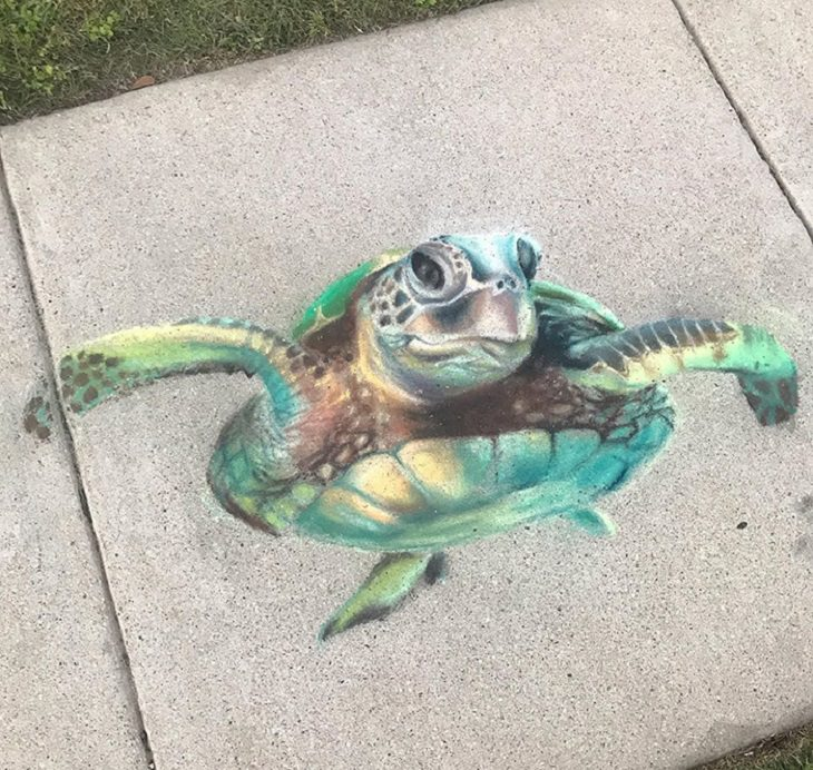 3-D chalk art by Jan Riggins and her teenage daughter Olivia, turtle