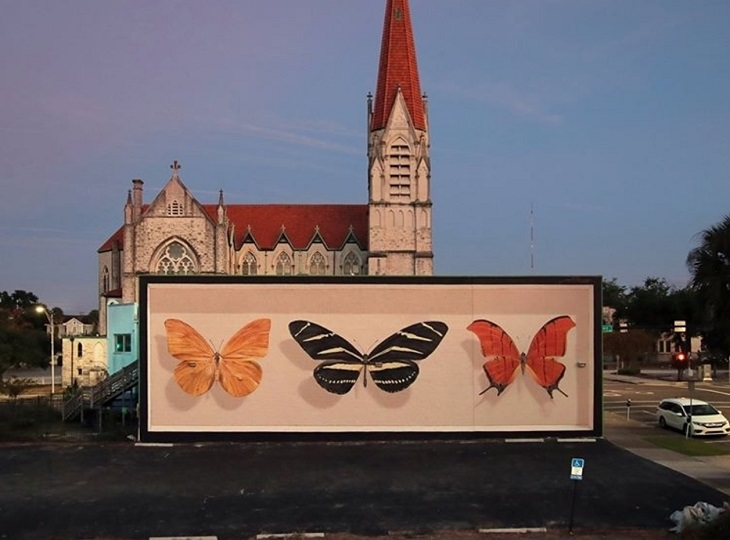 Hyper realistic butterfly specimen exhibits and displays painted as murals by street artist Mantra across the world, Triad in Jacksonville, USA