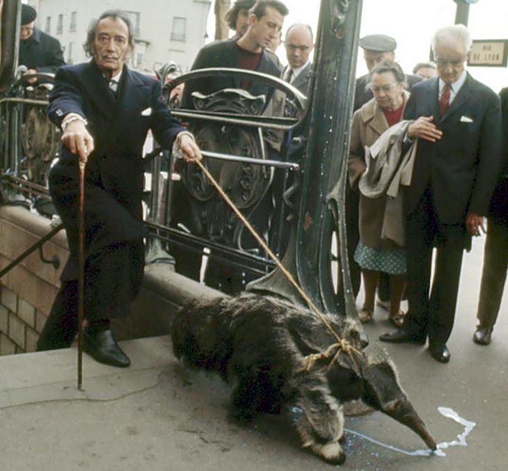 Celebrities and famous people that had strange and wild animals as exotic pets, Salvador Dali and his pet Anteater