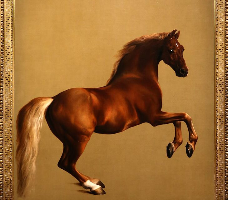 Best horse-inspired paintings by English artist George Stubbs who influenced 18th century romanticism, Whistlejacket, 1762
