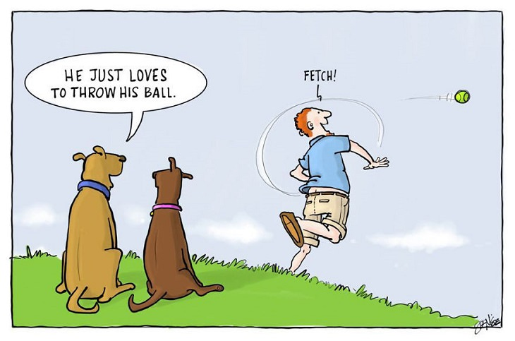 Hilarious cartoons and comics on the life and secret thoughts of dogs by illustrator Denise Natali-Paine