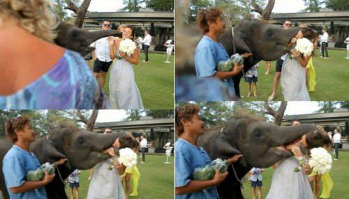 Strange wedding photos