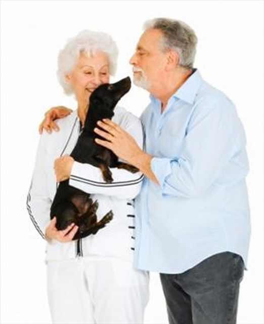 elderly couple with sausage dog