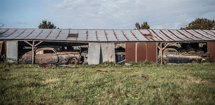 A Hidden Treasure Found On a Family Owned Farm Worth Millions!
