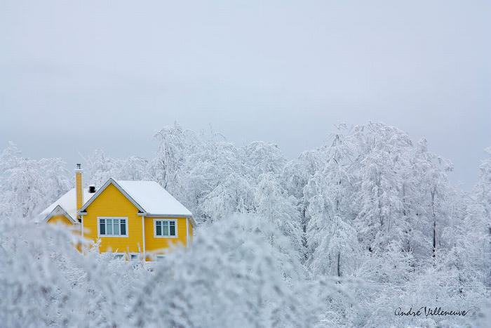 30 Lonely Little Houses