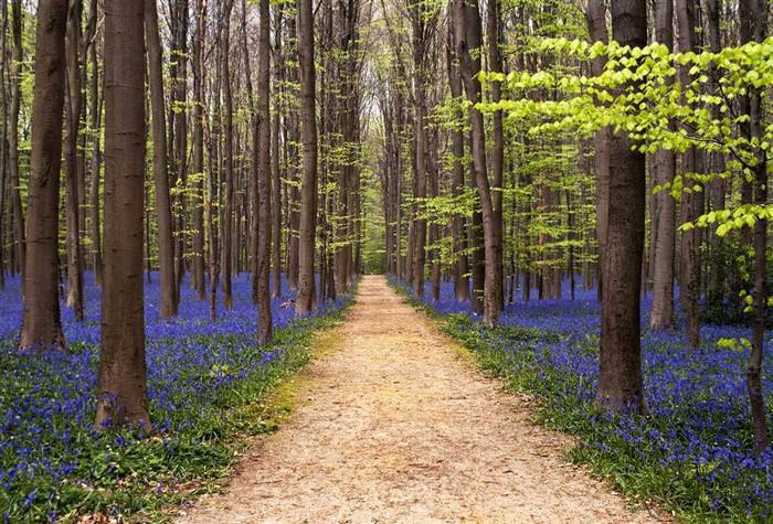 springtime places