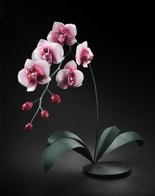 glass flowers orchids by Jason Gamrath